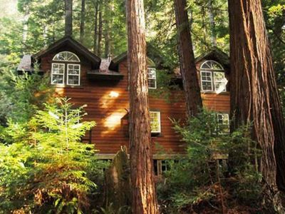 A home deep in the redwood forest but close to town and the Ocean
