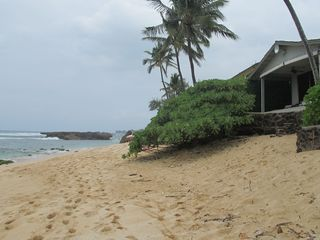 Haleiwa cottage photo - Beach directly in front of Haleiwa Beachfront