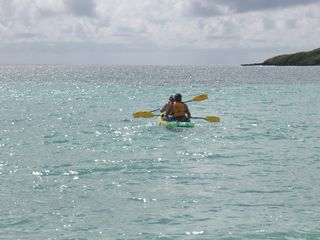 Vieques Island villa photo - Kayaking in the Caribbean