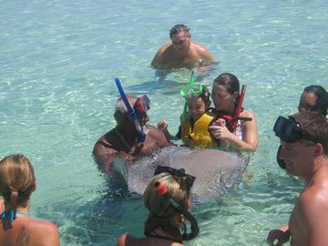 "Snorkeling at world famous ""Stingray City"""