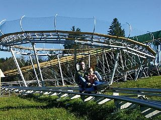 Ludlow house photo - Come ride the mountain coaster at Okemo Resort.