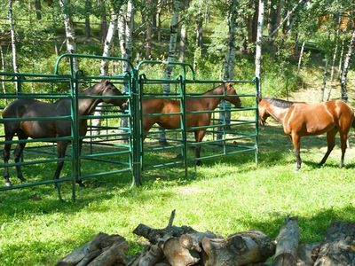 Aspen Grove also features two heavy-duty 12'x12' panel corrals for guests' use.