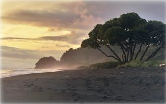 Playa Hermosa at sunset, Almendro Tree, world-class surfing