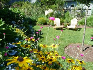 Biddeford house photo - Enjoy your morning coffee & newspaper among the flowers