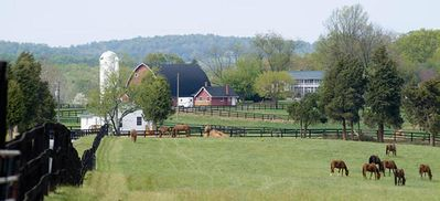 Charlottesville farmhouse rental - View of Manor House and Main Barn; This Farm is Huge!