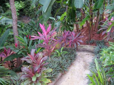 TROPICAL GARDENS OF OVER 400 PLANTS
