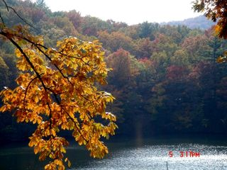 "Blue Ridge cabin photo - One of the stocked lakes in the ""neighborhood"" of the cabin"