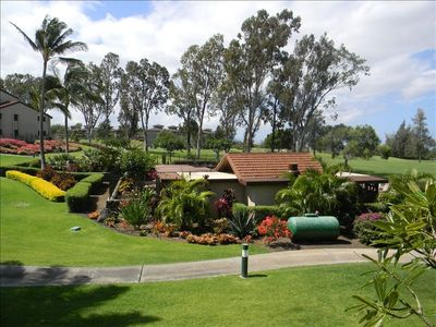 View of grounds from lanai