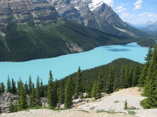 Banff condo photo - Famous Lake Peyto