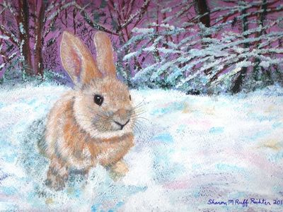 Winter bunny 2010 at Sherman Creek. Acrylic.