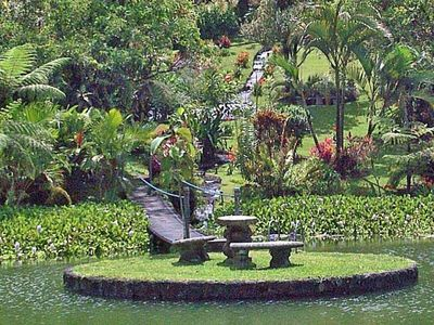 Your own Nature Preserve at it's Exquisite Best. Waterfalls + Manicured Gardens