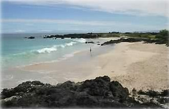 Secluded beaches 1/2 hr. north of Kona - easy access to frolic in these waves.