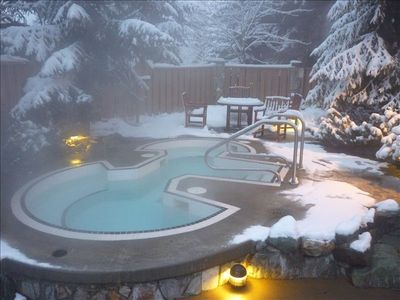 Adult Area: two Hot tubs and Pool