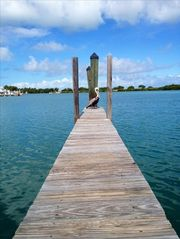 Marathon condo photo - Nice View in Hawk's Cay Marina