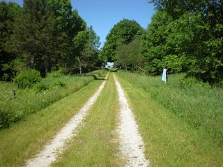 Claybank Township cottage photo - Driveway: view from road looking towards cottage