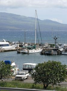 Visit the harbors, one is 100 yards from our door.