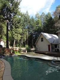 Foresthill house rental - Refreshing afternoon dip among the trees.
