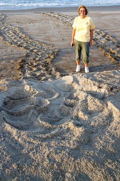 My first turtle crawl, 5/25/2012 (Nest 2)