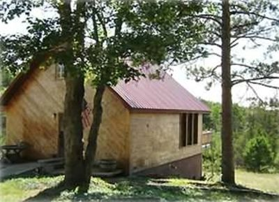 Kalkaska chalet rental - West view, Deer and Turkey are offen seen in the clearing
