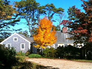 Vineyard Haven house photo - Beautiful in the fall, too