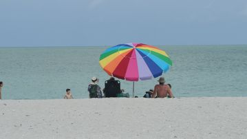 Relax on nearby Fort Myers Beach or Sanibel & Captiva Islands