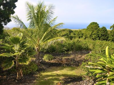 Farm and ocean view from the lanai.