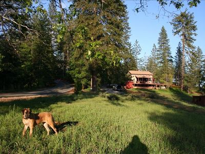 RIDGELINE CABIN, on a quiet country road with almost no traffic. Dog heaven!