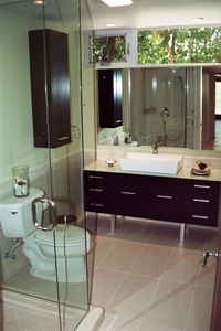 Guest suite bathroom with over-sized sink, stone counter top and glass shower.