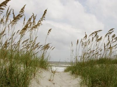 Amelia Island condo rental - Enjoy Beautiful Sunrises Over The Atlantic Ocean