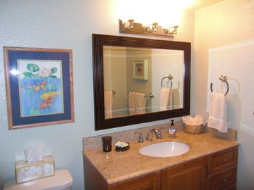 New Bathroom with Granite Counters and Glass Block Shower