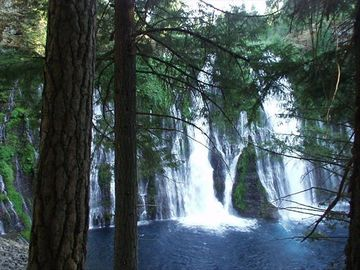 One of the many views of Burney Falls. A must-see for everyone.