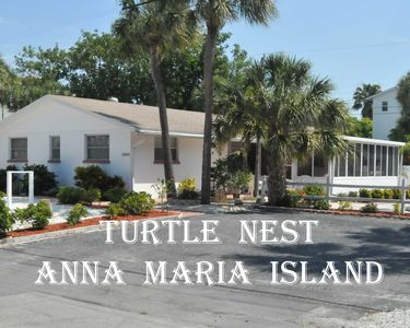 The Turtle Nest
