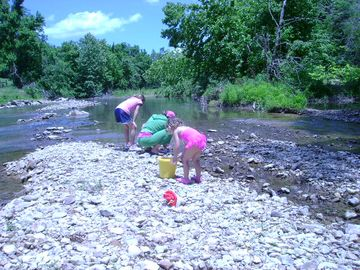 Searching for crayfish on Clear Creek