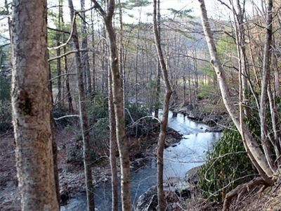View of the river winding by Wounded Fork - Boone NC cabin rental