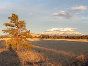 Parks house rental - The backyard & Mount Humphreys, only 25 min to downtown Flagstaff.