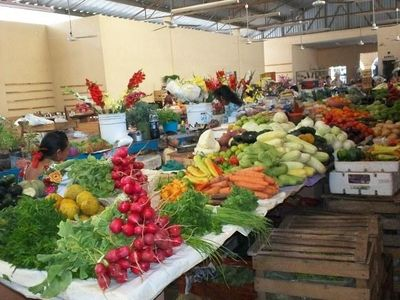 Organic fruits and vegetables for sale at local market
