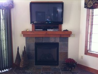 Fireplace with 42' flat panel plasma TV