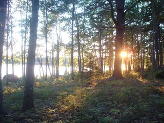 Sunset on the Pond - Franklin cabin vacation rental photo