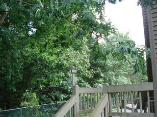 Shawnee townhome photo - Private, small deck with view of woods