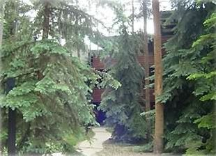 Condo Nestled in the Pines