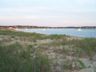Wellfleet house photo - Wellfleet harbor-just a short drive