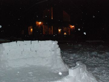 Plenty of flat ground for snow fort building