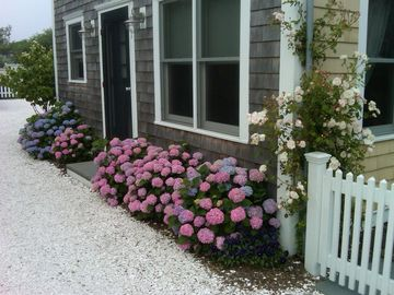 Provincetown condo rental - Side Entrance at Drive