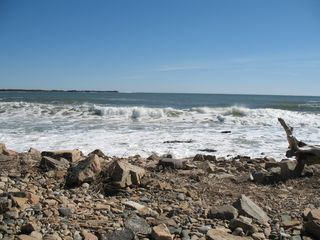Prospect Harbor cottage photo - Rocks and Waves