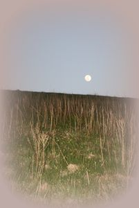 Moonrise at Max Patch Bald. 5 miles from cabin.
