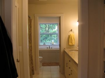 Master bathroom, shower, closet, dual sink vanity and deep soaking tub