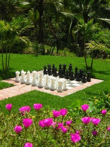 Garden chess board