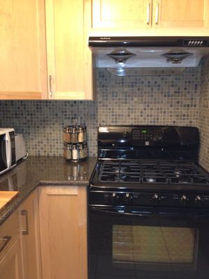 BRAND NEW high end gas stove,5 burners, convection oven with matching fridge