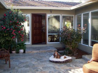 Dogs are welcome; the yard is fenced; & a dog park is close by for socialization