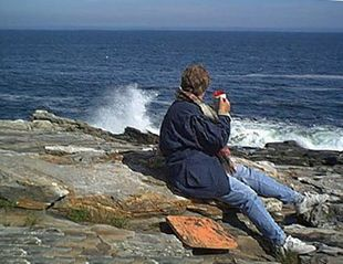 Pemaquid Point cottage photo - Go have your Coffee on the Rocks
